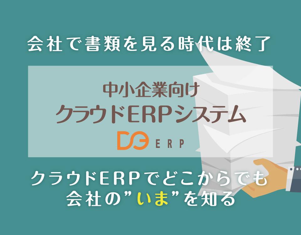 D3-ERP