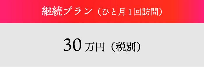 継続プラン(ひと月1回訪問)30万円(税別)