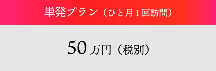 単発プラン(ひと月1回訪問)50万円(税別)